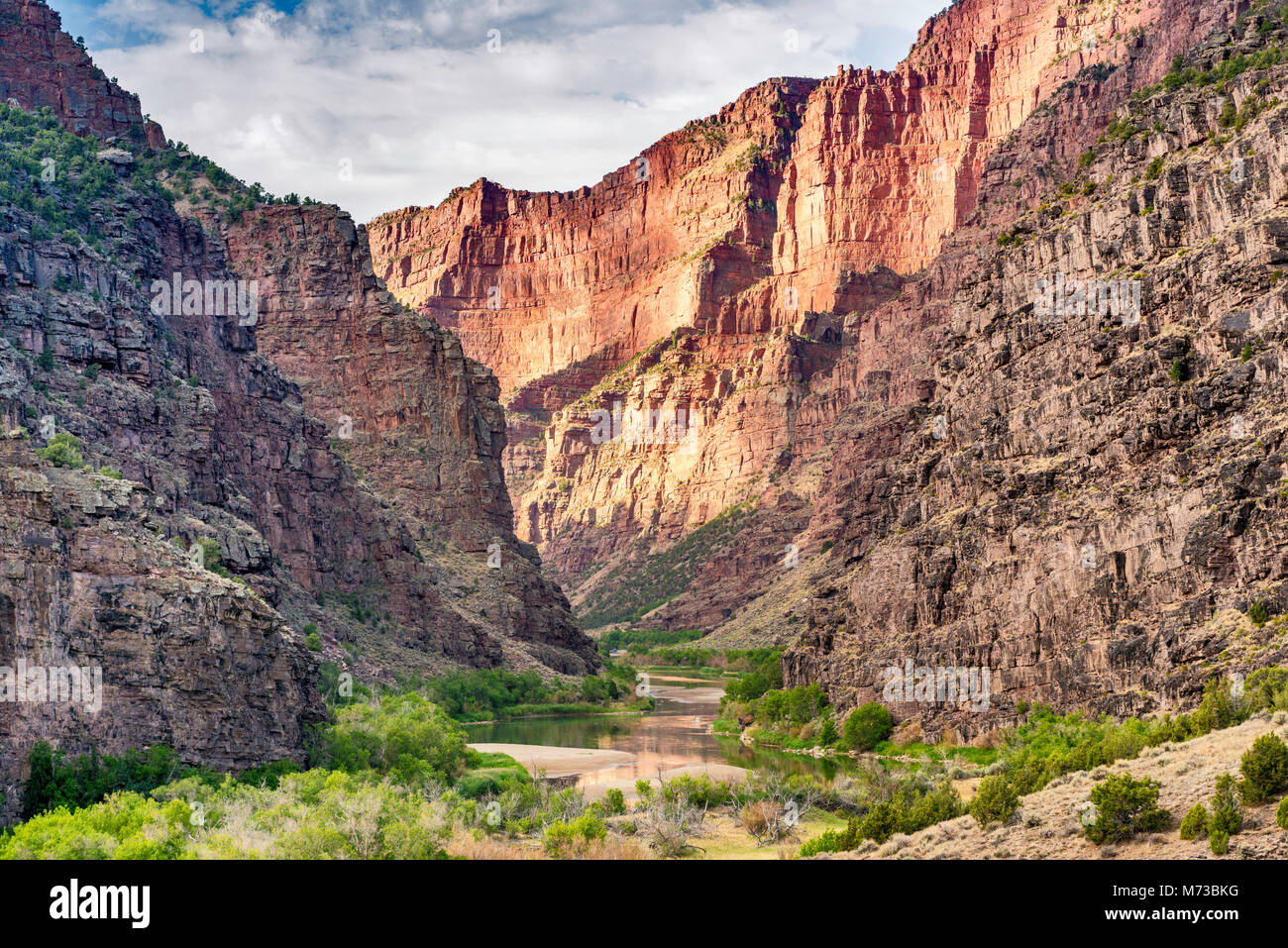 Green River in Canyon of Lodore at Gates of Lodore, Dinosaur National Monument, Colorado, USA - Stock Image