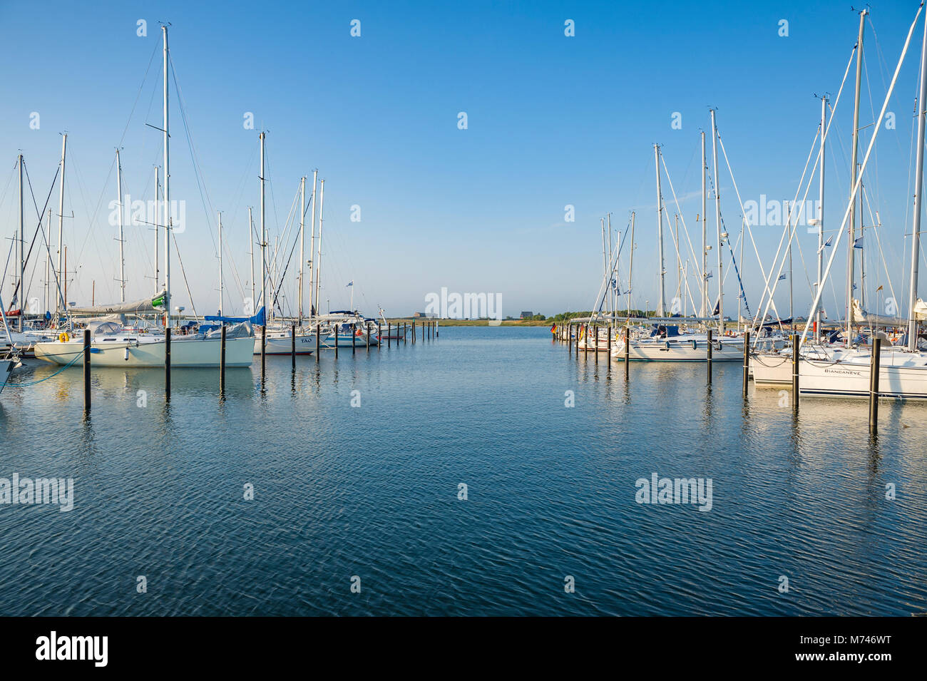Marina, Heiligenhafen, Baltic Sea, Schleswig-Holstein, Germany, Europe Stock Photo