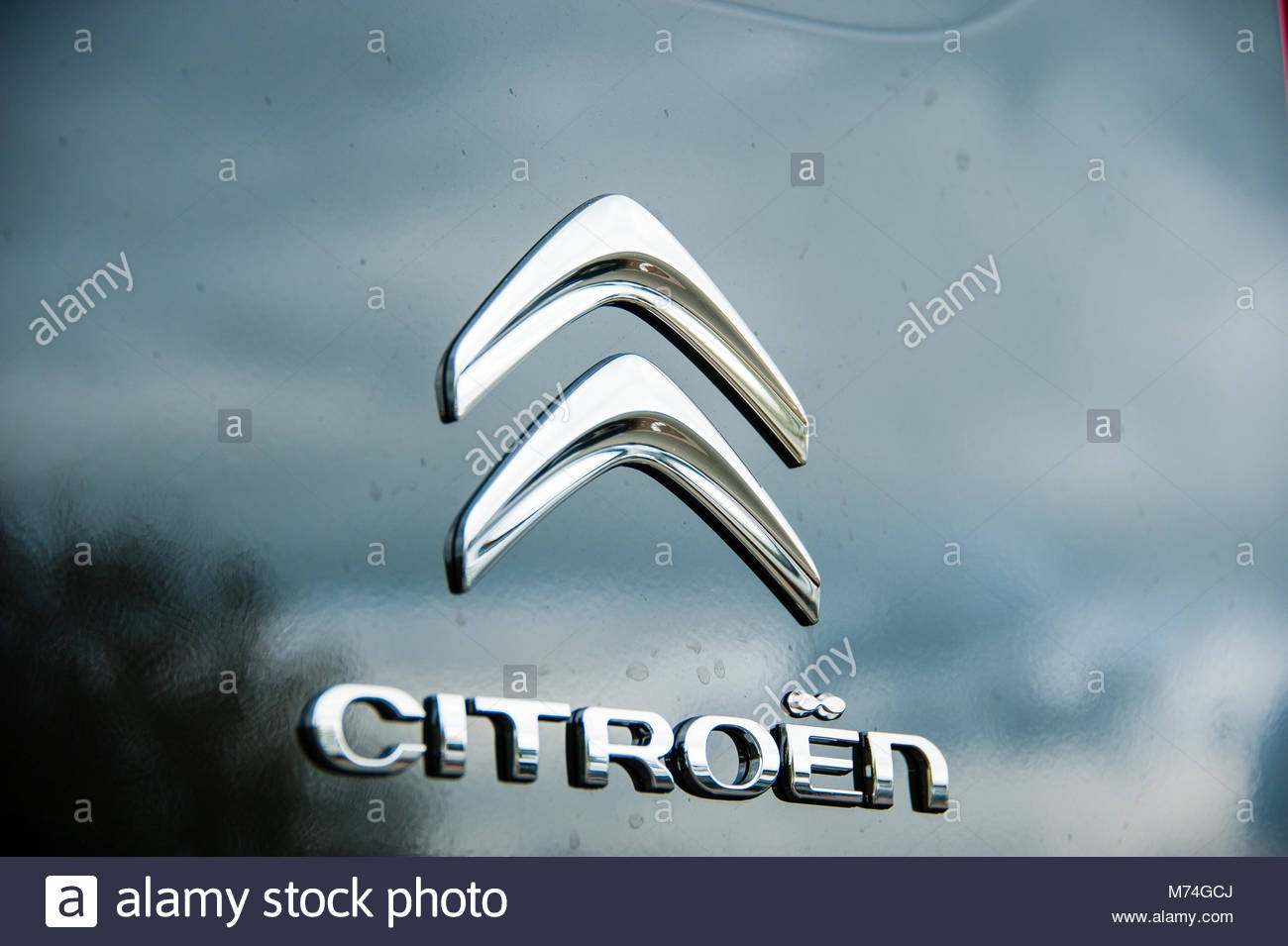 Citroen logo & sign on the front grill of a black Citroen Berlingo combo van, England UK Stock Photo
