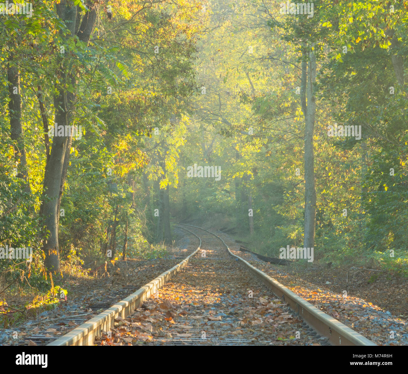 Mid Octobber along the Walkersville Southern senic railroad tracks. - Stock Image