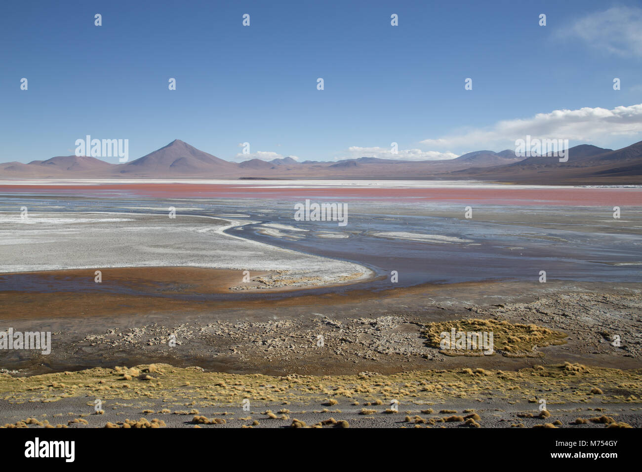 Laguna Colorada in Bolivia - Stock Image