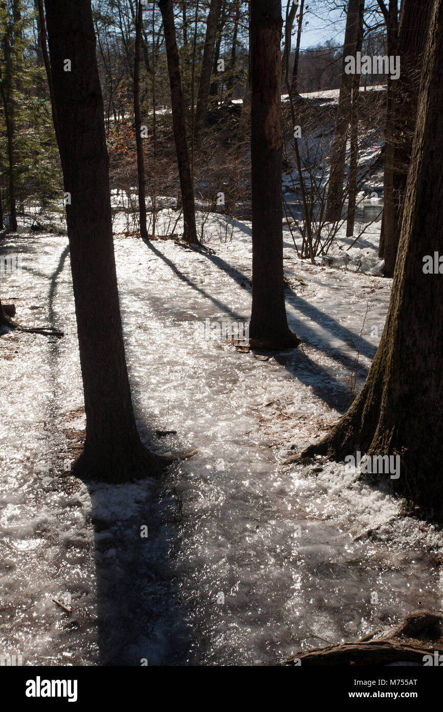 Winter flooding of the mill River in Northampton, MA has scattered chunks of ice along the shore. - Stock Image