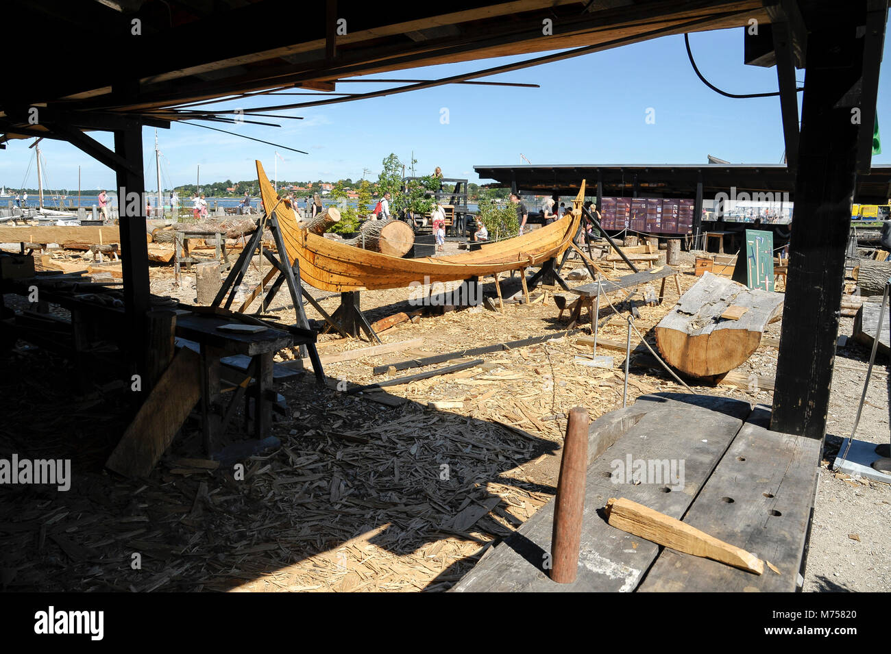 Full scale navigable reconstructions of Viking ships in boatyard on Museumsøen (Museum island) and Vikingeskibsmuseet - Stock Image