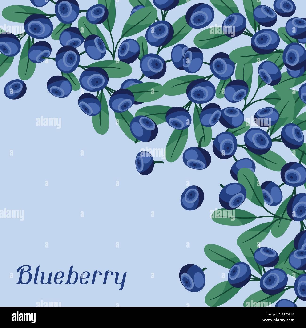 Nature background design with blueberries. - Stock Vector