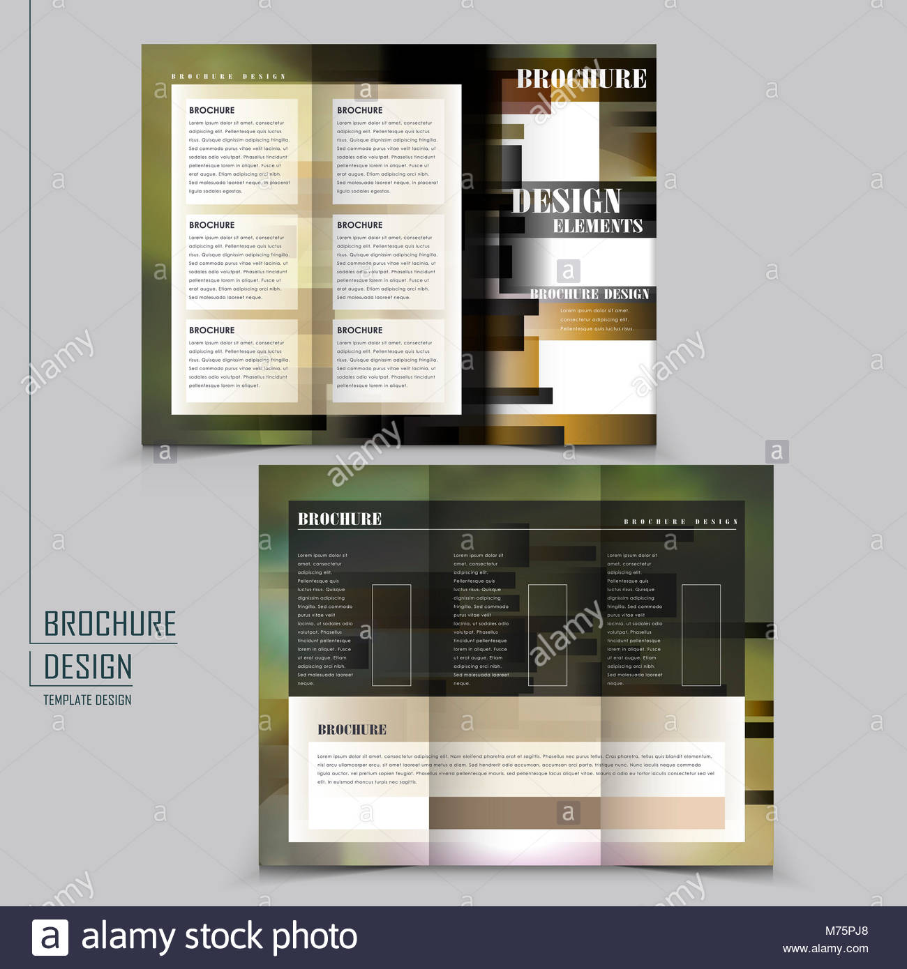 abstract tri fold brochure template design with blurred background Stock Image