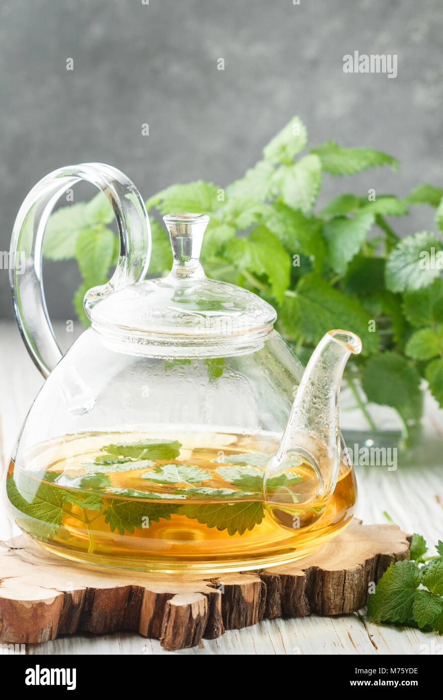 Herbal tea in a transparent teapot on the table and sprigs of fresh Melissa (lemon balm) and mint. Selective focus Stock Photo