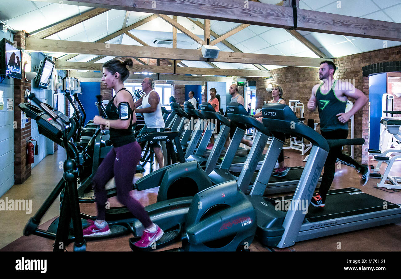 Men and women using cross trainers and treadmills in a modern gym with wooden beams and brick walls. - Stock Image