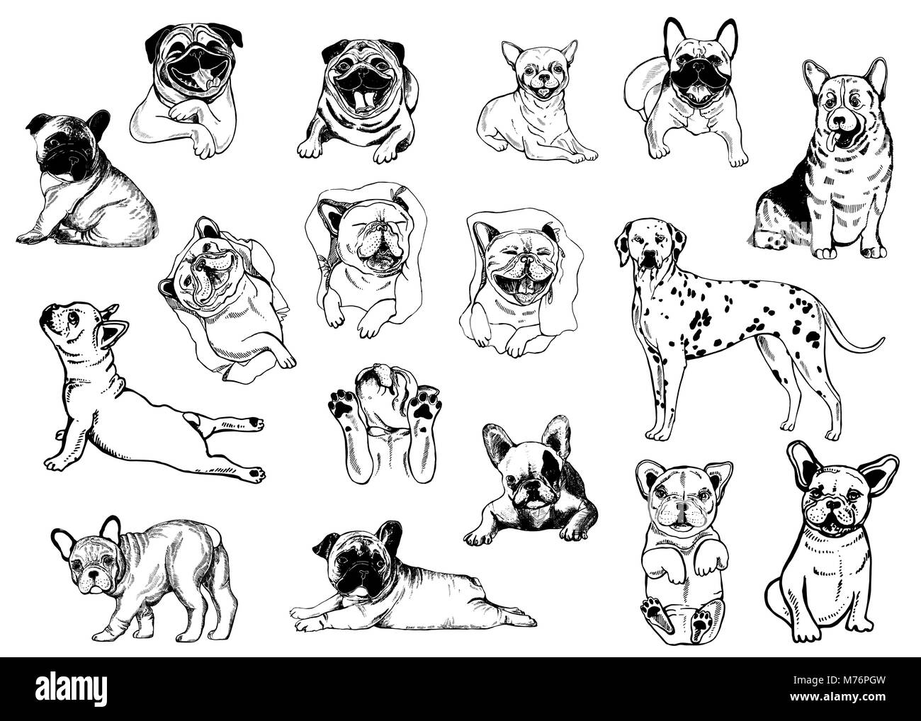 Set Of Hand Drawn Sketch Style Dogs Isolated On White Background