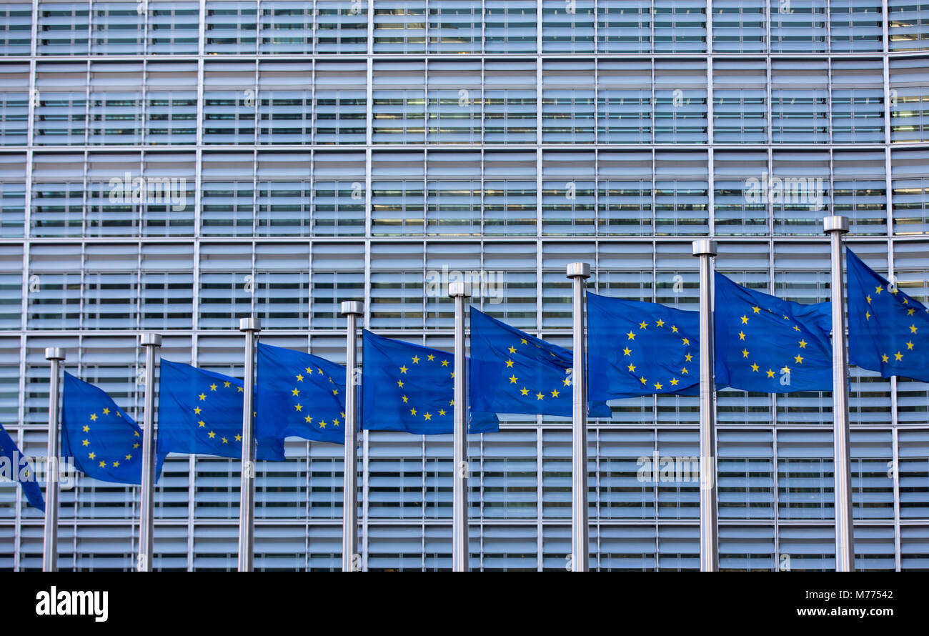 European flags in front of the building of the European Commission, Berlaymont building, Brussels, Belgium, - Stock Image