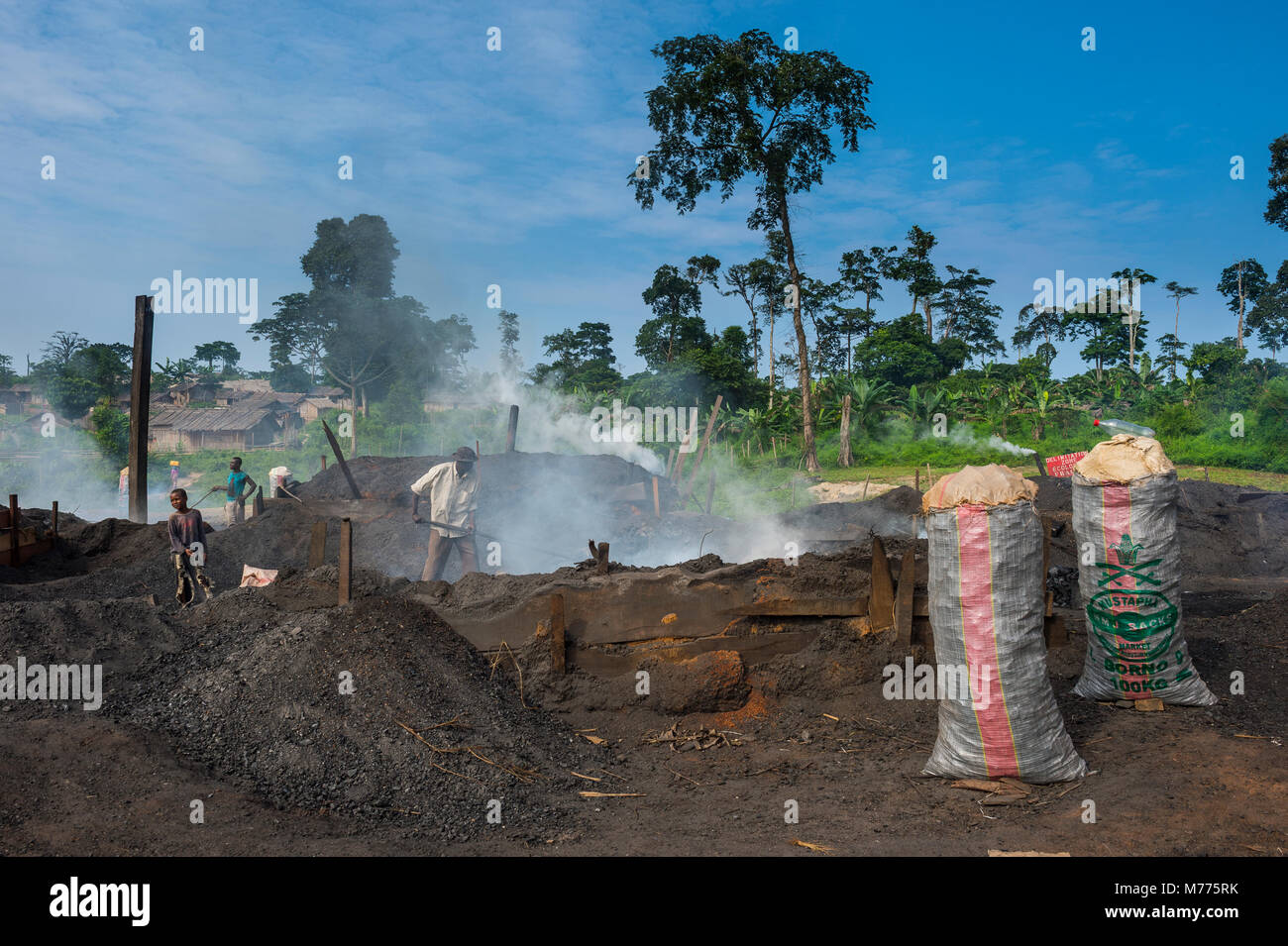 Coal production out of wood (charcoal), Libongo, deep in the jungle, Cameroon, Africa - Stock Image