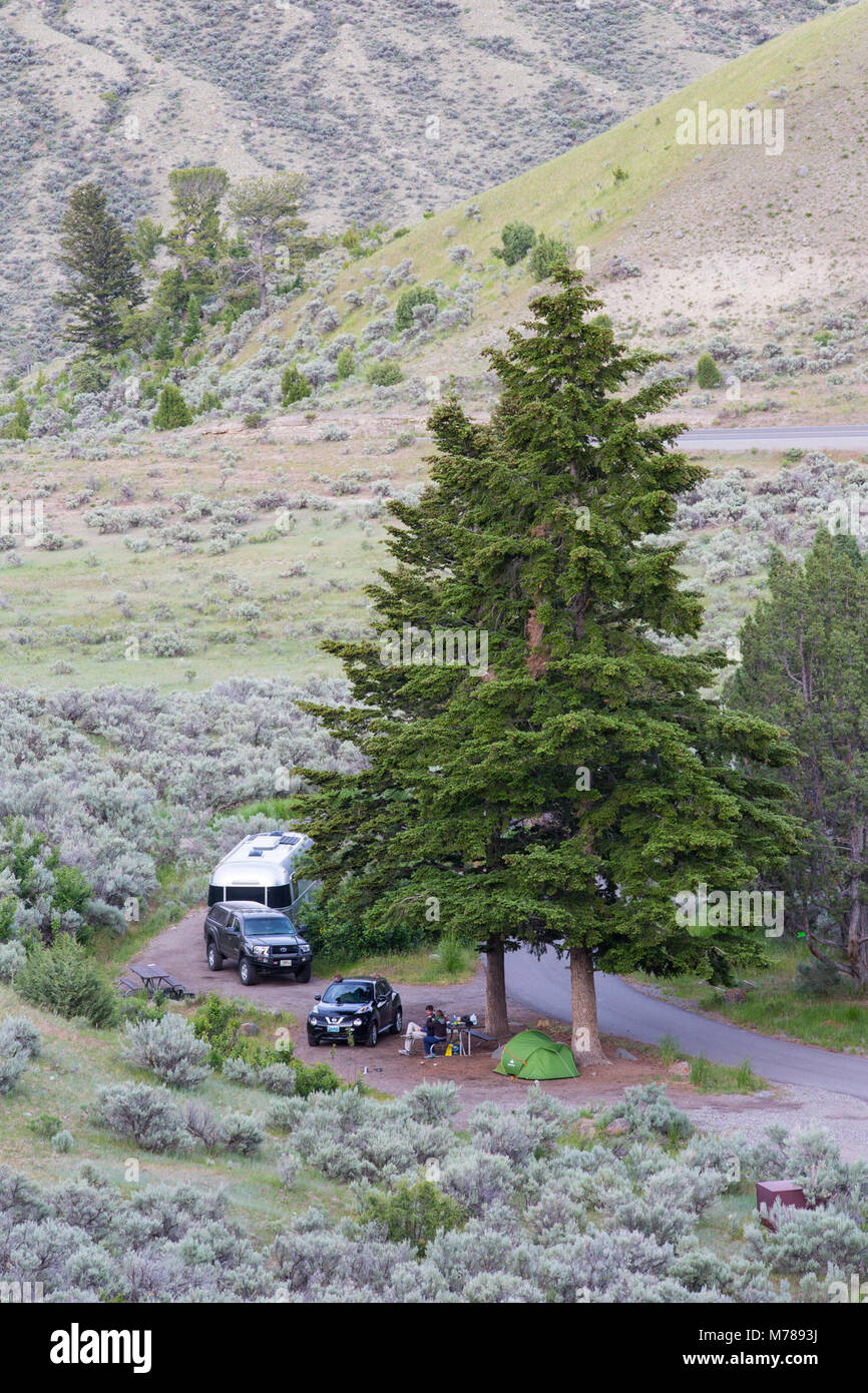 Camping in the Mammoth Hot Springs Campground Stock Photo: 176589046
