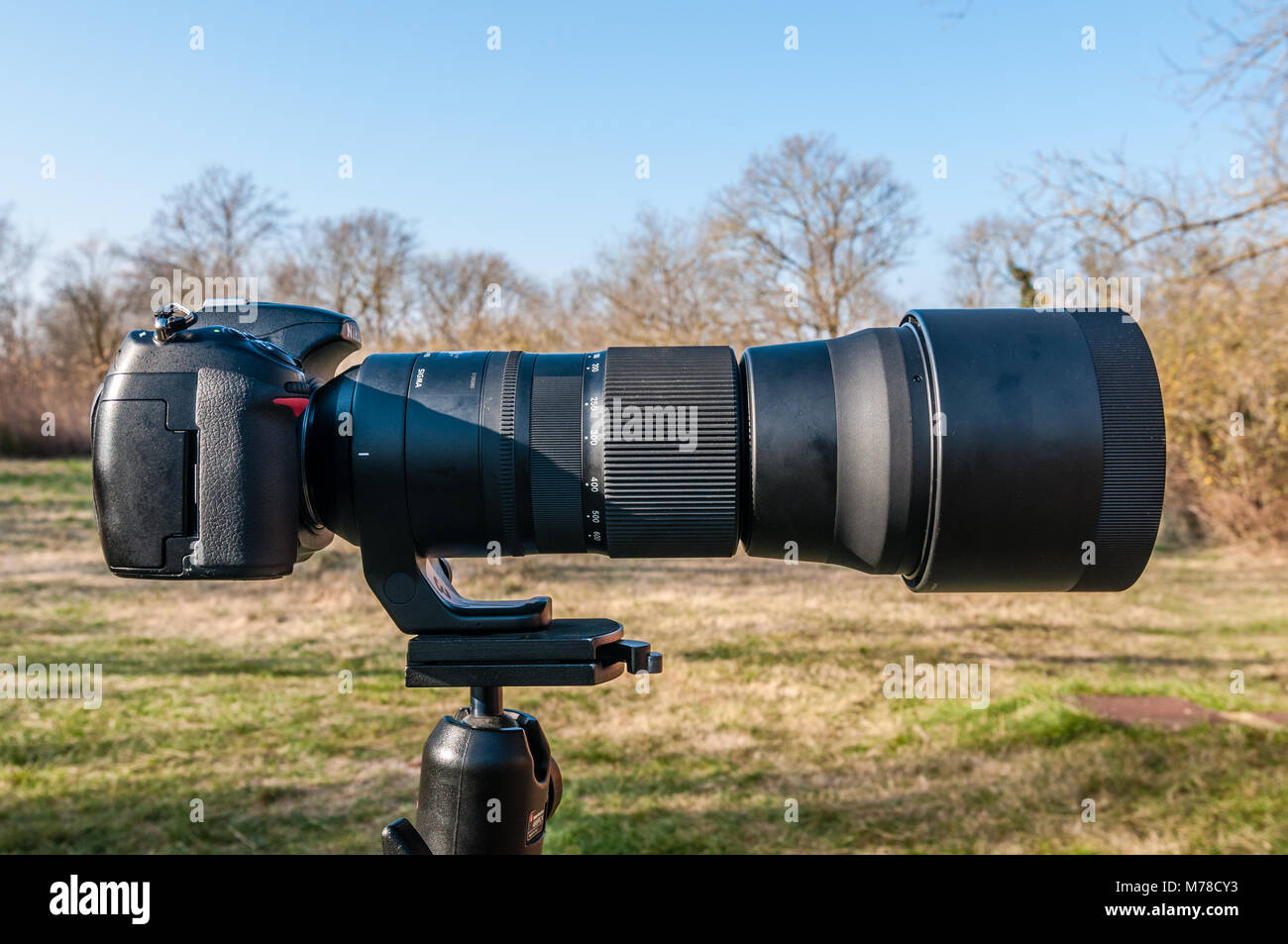 nikon d300 with sigma 150-600 mounted on a tripod Stock Photo