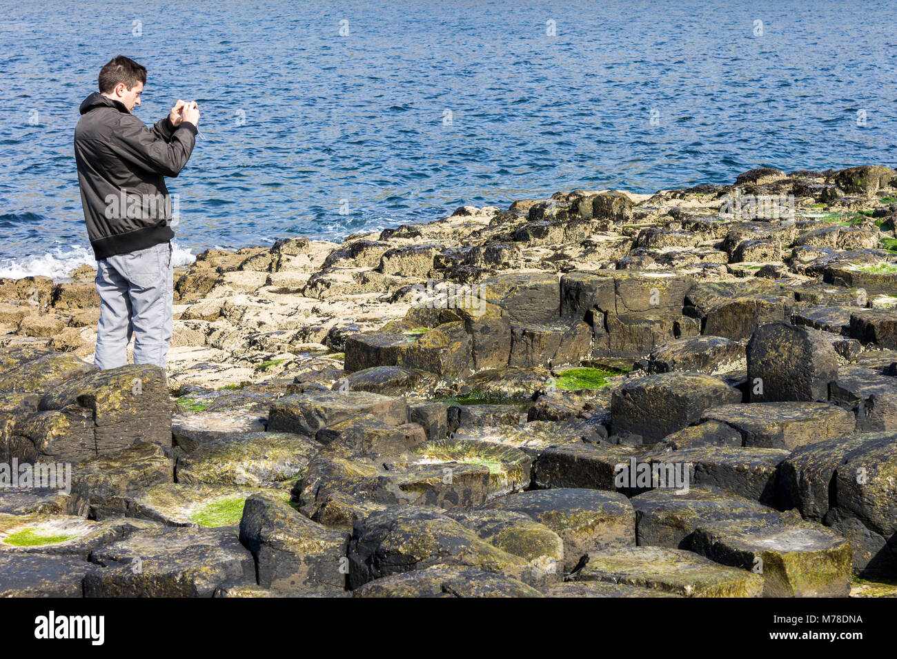 The Giant's Causeway, basalt columns from an ancient volcanic eruption in County Antrim on the north coast of - Stock Image