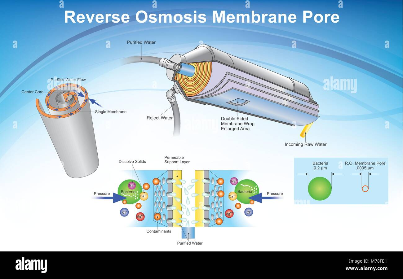 Reverse osmosis (RO) is a water purification technology that uses a semipermeable membrane to remove ions, molecules, - Stock Image