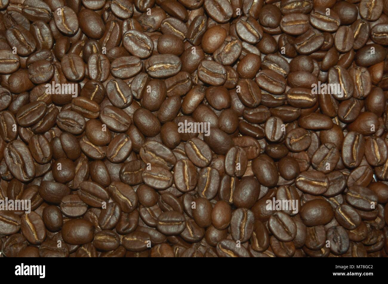 Tips When Searching For Fresh Roasted Coffee