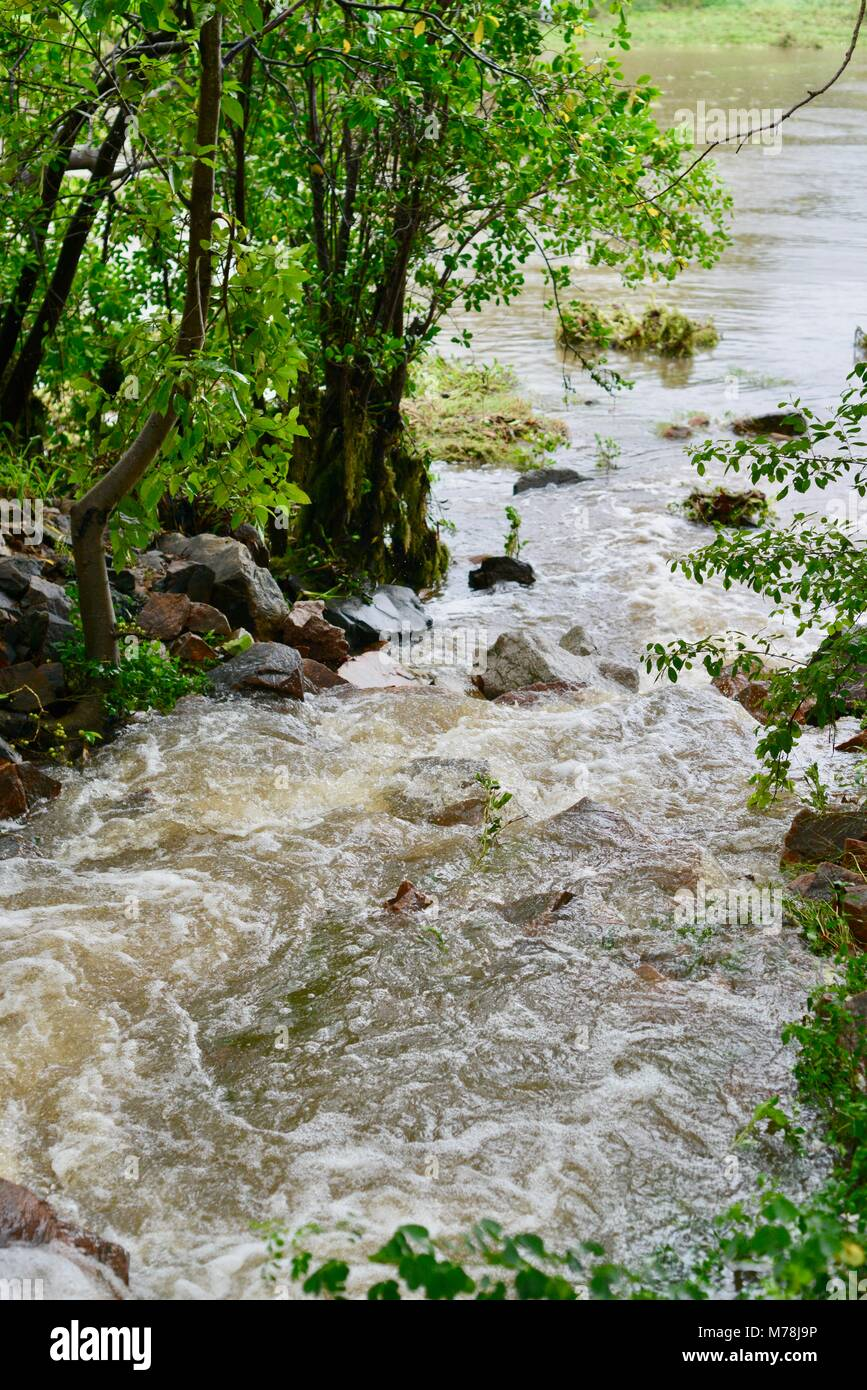 Water flowing out of a large storm water drain after storms and heavy rainfall into the Ross river, Aplins weir, - Stock Image
