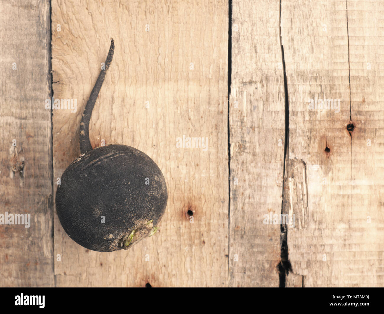 Black winter radish on a rustic wooden table, view from above with space for text or image - Stock Image