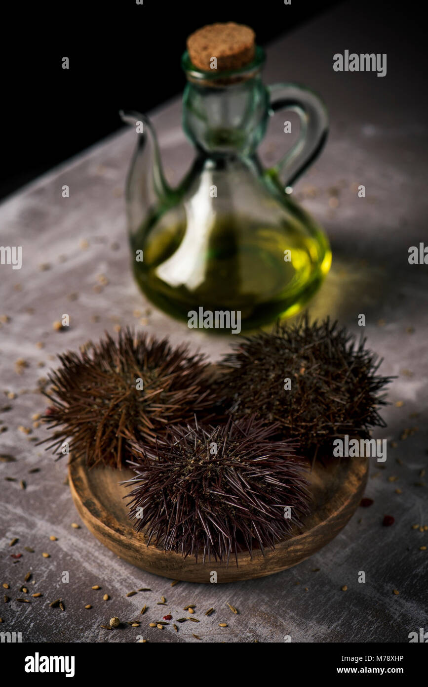 closeup of some raw mediterranean sea urchins in a wooden plate and a glass cruet with olive oil, on a gray rustic - Stock Image