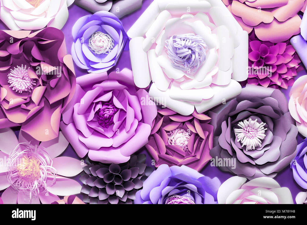 Colorful paper flowers on wall handmade artificial floral stock colorful paper flowers on wall handmade artificial floral decoration spring abstract beautiful background and texture ultraviolet tone color of t mightylinksfo