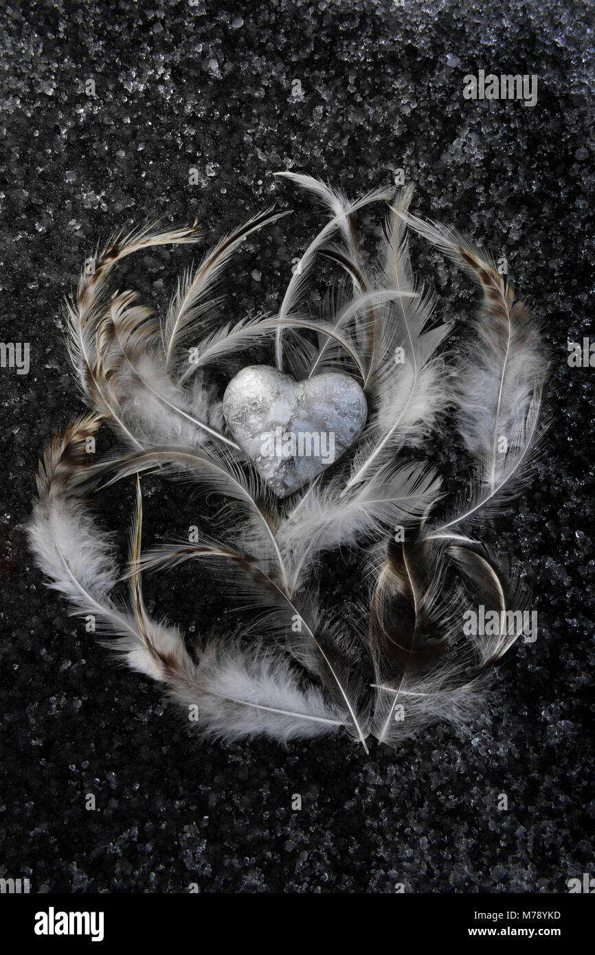 Small silver grey marble effect polymer clay heart enfolded by brown and white feathers on frozen snow and ice. - Stock Image