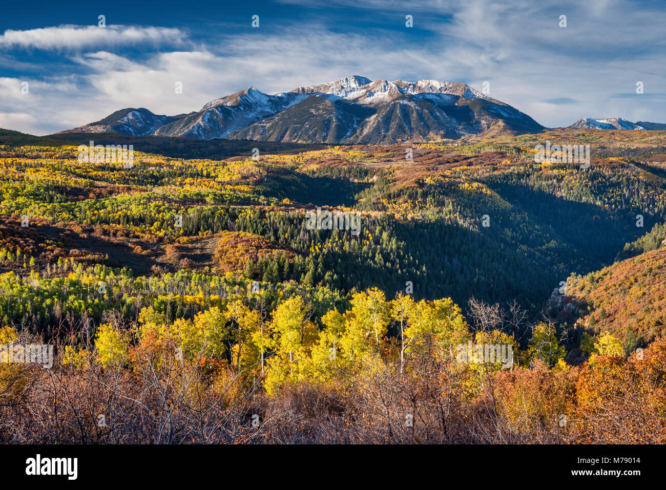 Mount Gunnison, seen from West Elk Loop Scenic Byway, Gunnison National Forest, West Elk Mountains, Rocky Mountains, - Stock Image