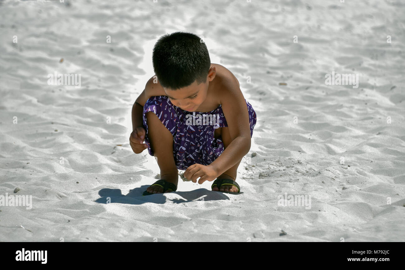 A young boy discovering a hermit crab on the beach in Panama City Florida. - Stock Image