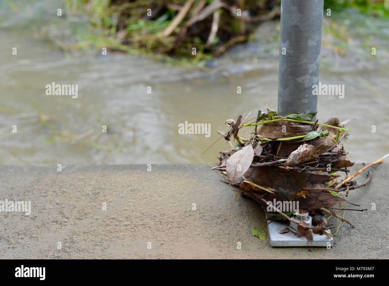 Debris lies over a pedestrian path after storms and heavy rainfall and flooding, near Aplins weir, Townsville, Queensland, - Stock Image