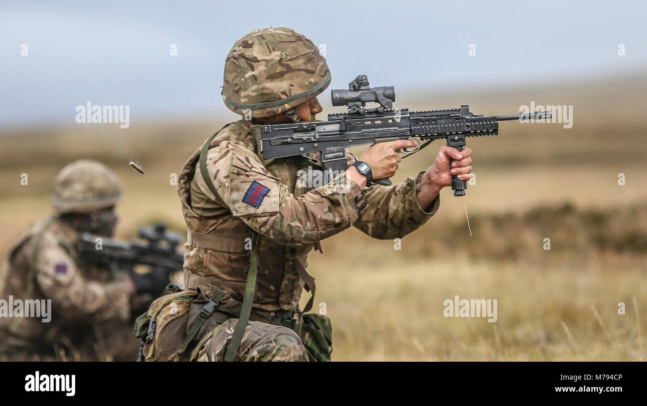 Para's on the Onion Range MOD 45163600 Stock Photo