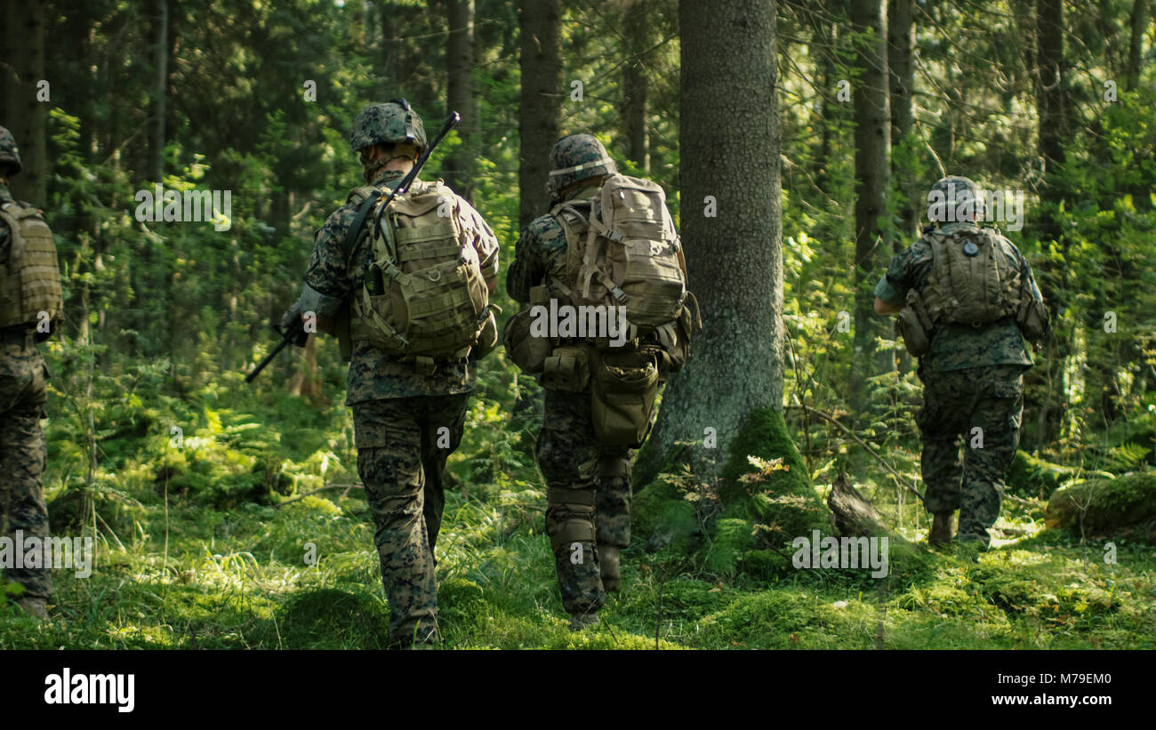 Squad of Five Fully Equipped Soldiers in Camouflage on a Reconnaissance Military Mission, Rifles in Firing Position. - Stock Image