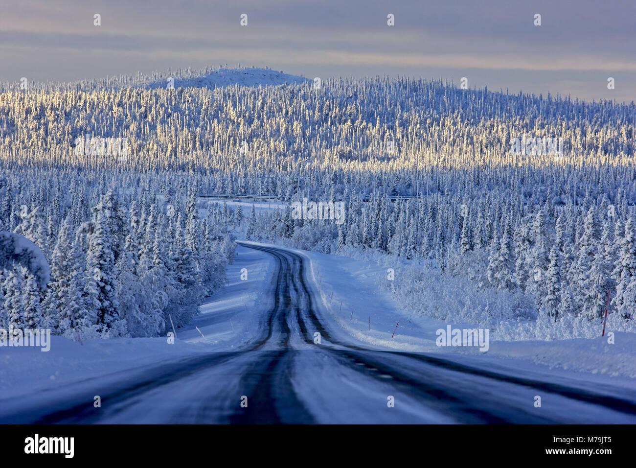 Sweden, Swedish Lapland, Gällivare, winter, winter scenery, - Stock Image