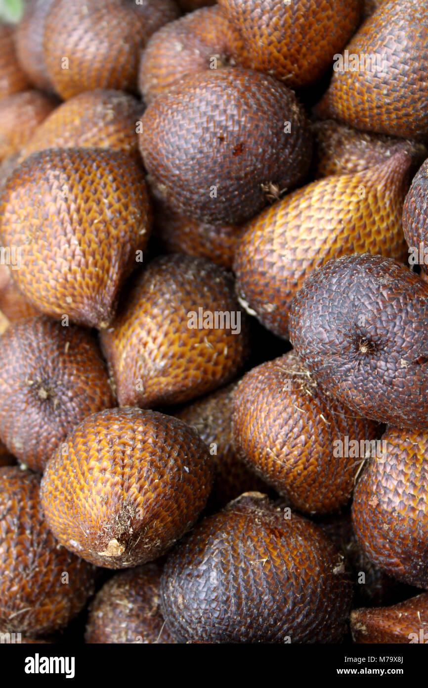Salak asian fruit - Stock Image