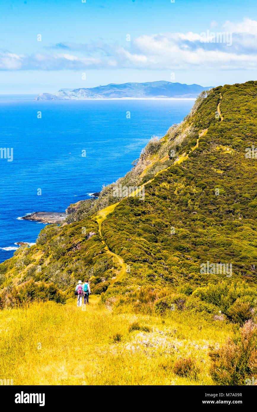 Walkers on coastal path east of Tapotupotu Bay, near Cape Reinga, North Island, New Zealand with view towards Ngataea - Stock Image