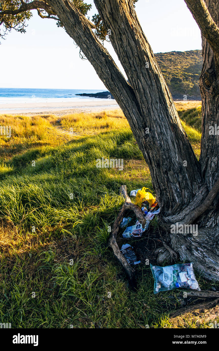 Litter under tree beside the Tapotupotu Bay campground, the nearest campsite to Cape Reinga, North Island, New Zealand - Stock Image