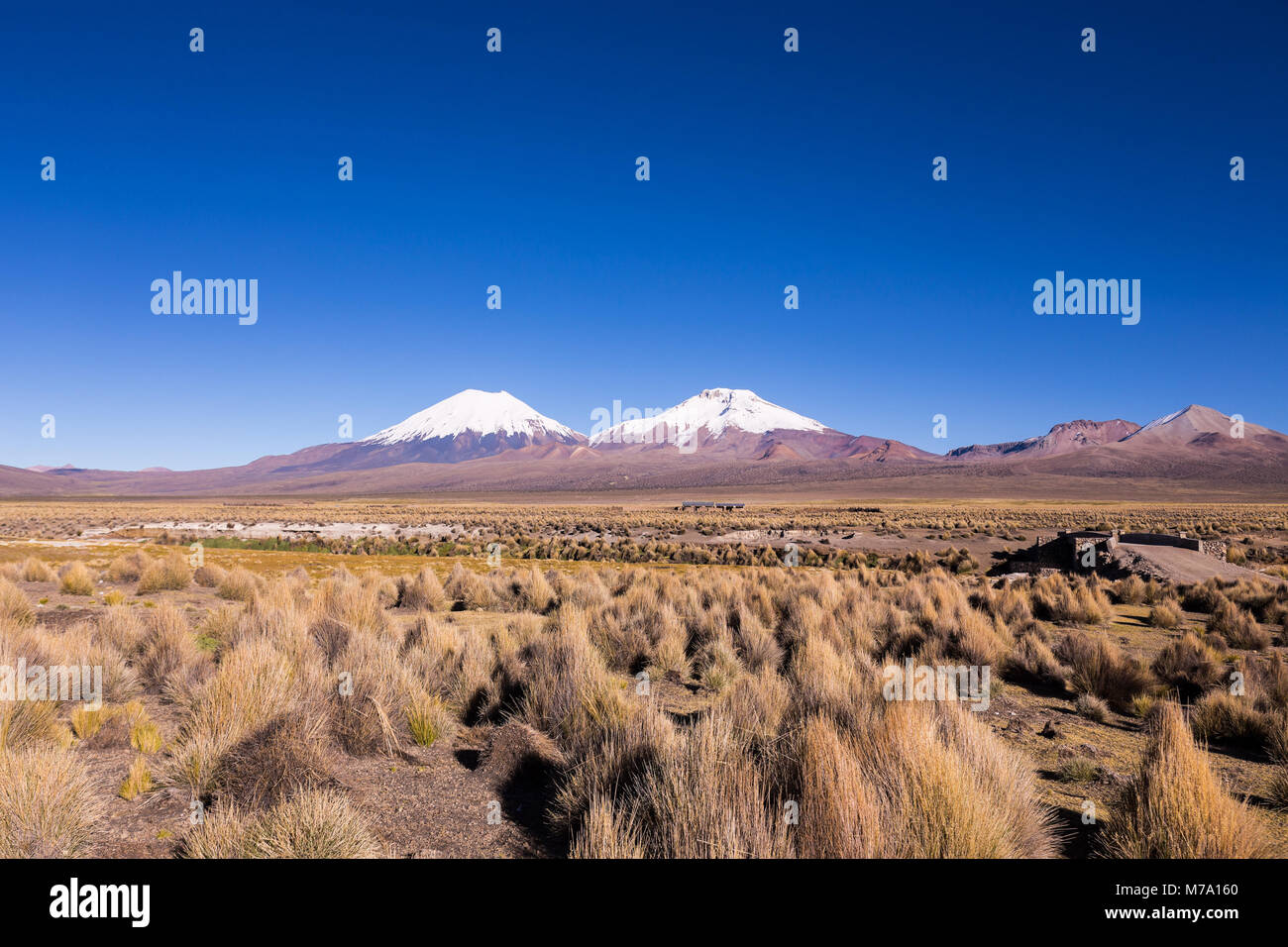 Bolivian panoramic: High Andean tundra landscape in the mountains of the Andes. The weather Andean Highlands Puna - Stock Image