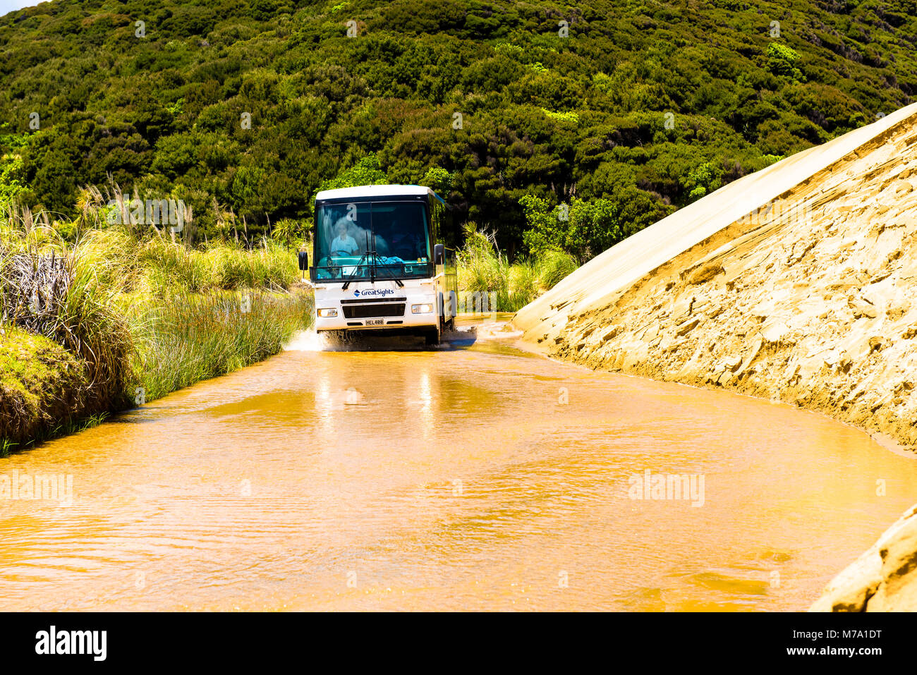 Tourist bus drives up the Te Paki Stream, used as a 'road' to access Ninety Mile Beach, North Island, New - Stock Image
