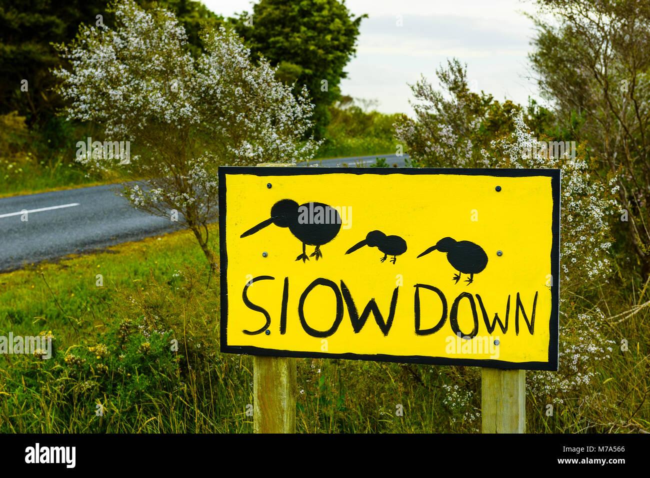 Kiwi warning sign on Waire Road near Kerikeri, North Island, New Zealand - Stock Image