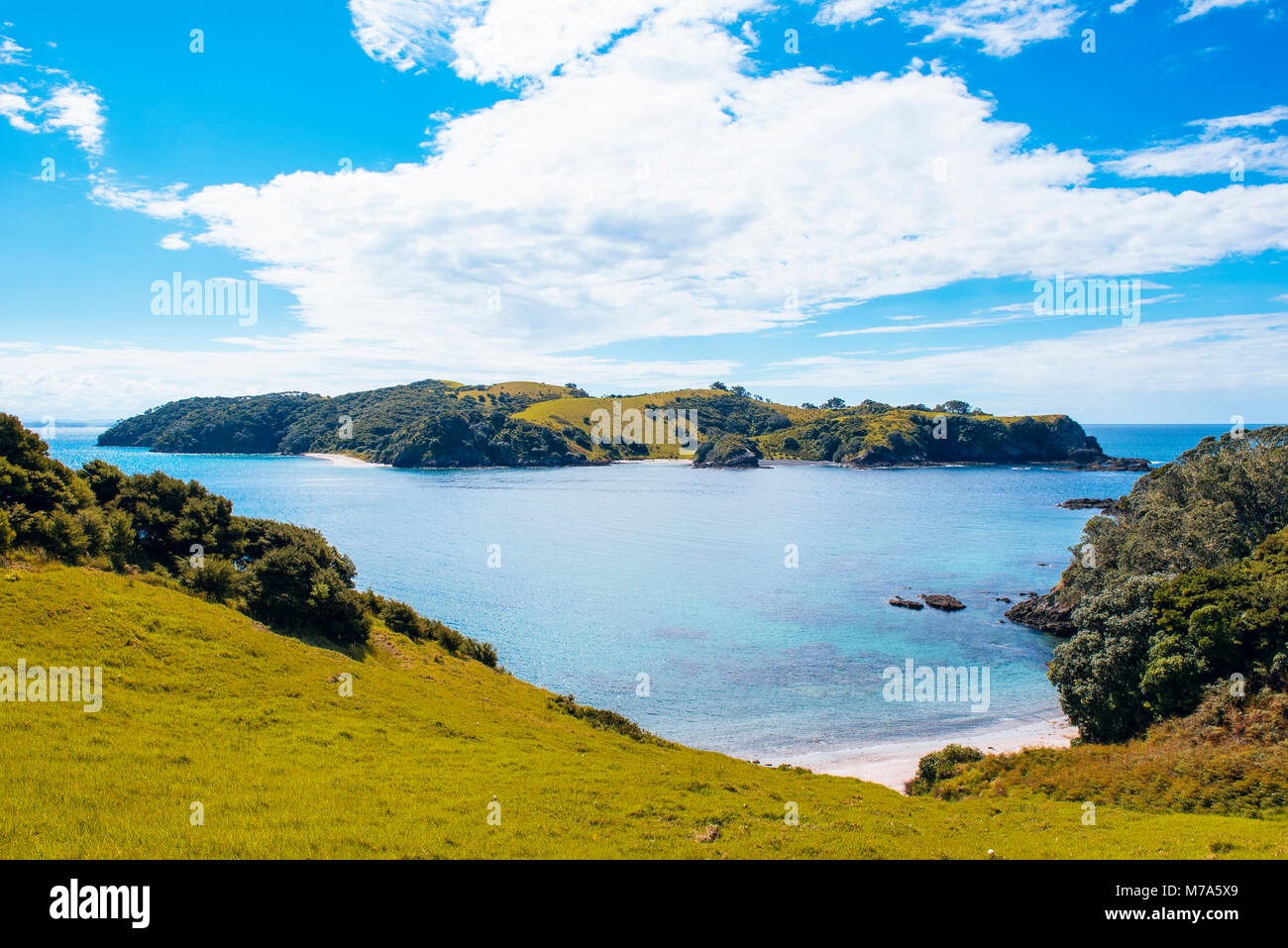 View from Urupukapuka Island in the Bay of Islands, North Island, New Zealand, looking towards Waewaetorea Island - Stock Image