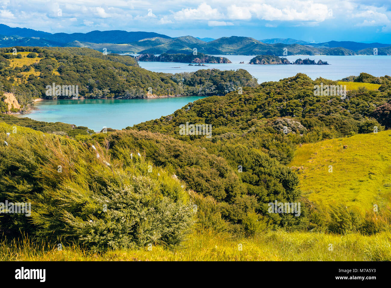 View from Urupukapuka Island in the Bay of Islands, North Island, New Zealand over the Albert Channel towards the - Stock Image