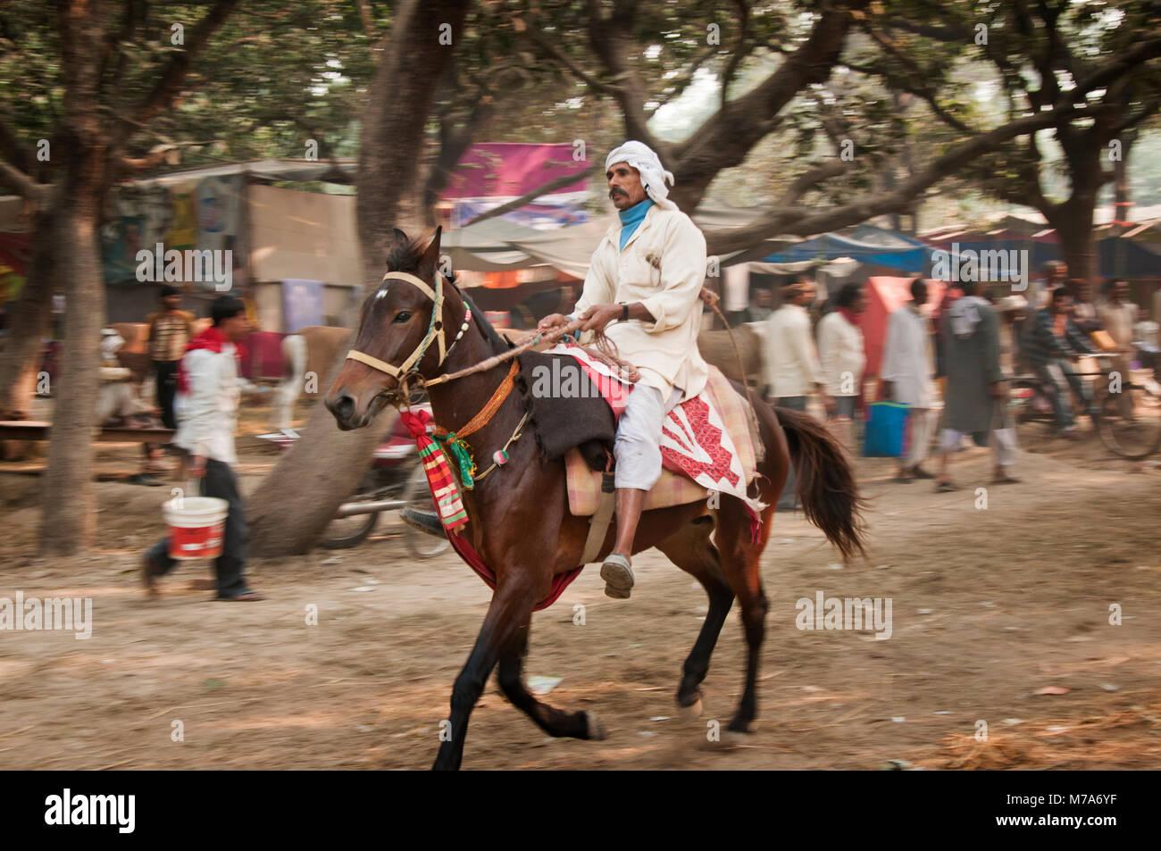 Sonepur Mela Stock Photos & Sonepur Mela Stock Images - Alamy