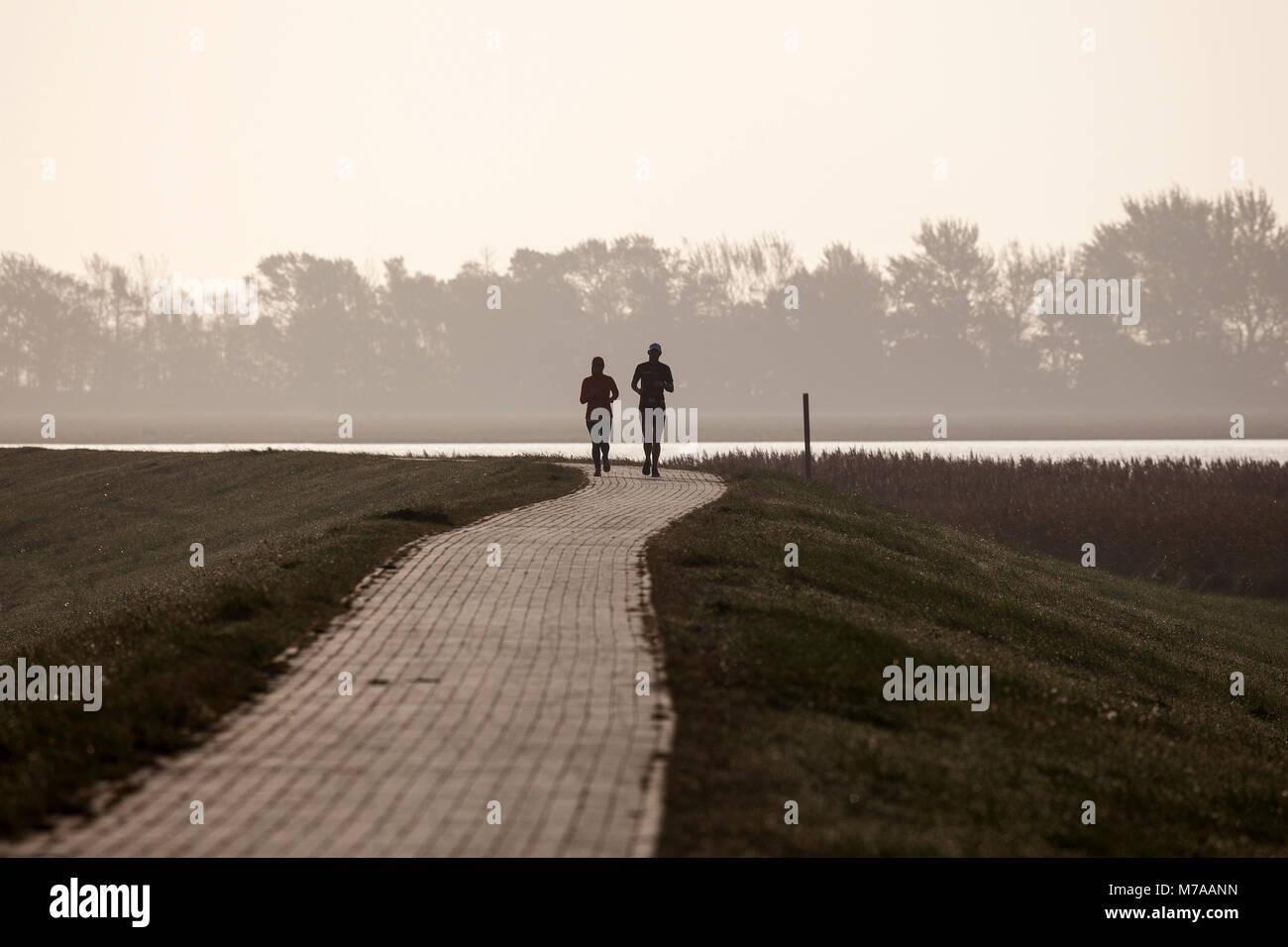Two joggers on a dike, Fischland-Darß-Zingst, morning atmosphere, Western Pomerania Lagoon Area National Park - Stock Image