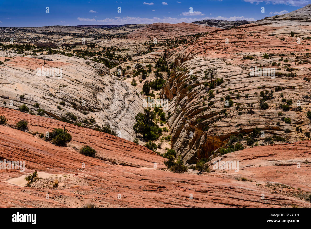 The USA, Utah, Garfield County, Grand Staircase-Escalante National Monument, Escalante, scenery in the Scenic Byway Stock Photo