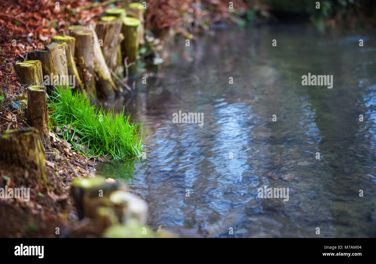 Brook, bank reinforcement, pond - Stock Image