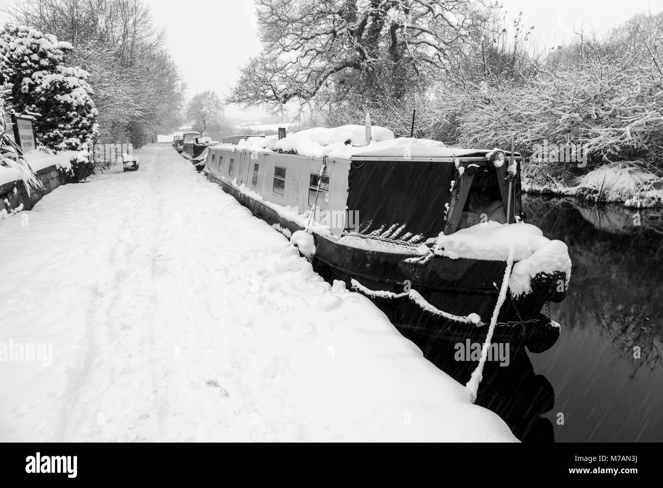 Narrowboats covered in snow are seen moored up on the Llangollen Canal - Stock Image
