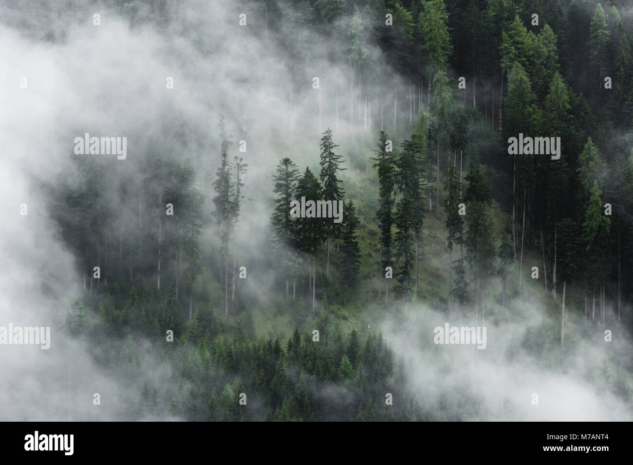 Misty mood in the Dolomite Alps with telephoto lens, Italy - Stock Image