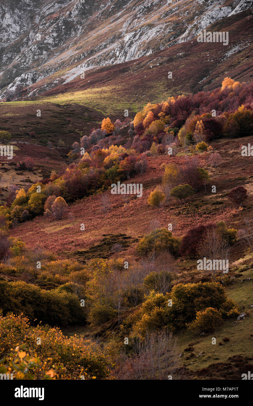 Autumn landscape in the Picos de Europa, Cantabria, Spain - Stock Image