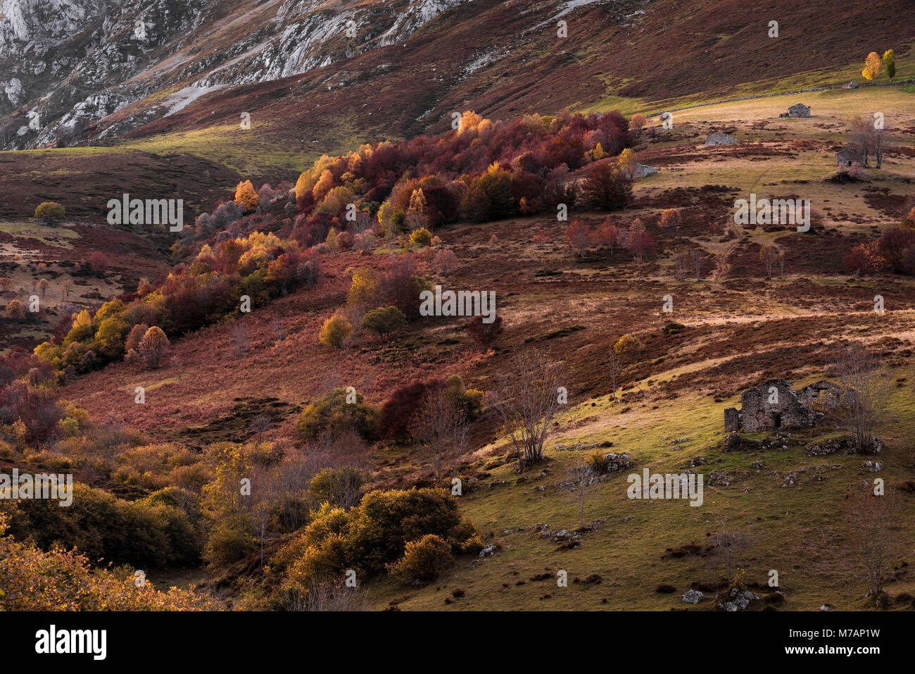 Autumn landscape in the Picos de Europa with ancient ruins, Cantabria, Spain - Stock Image