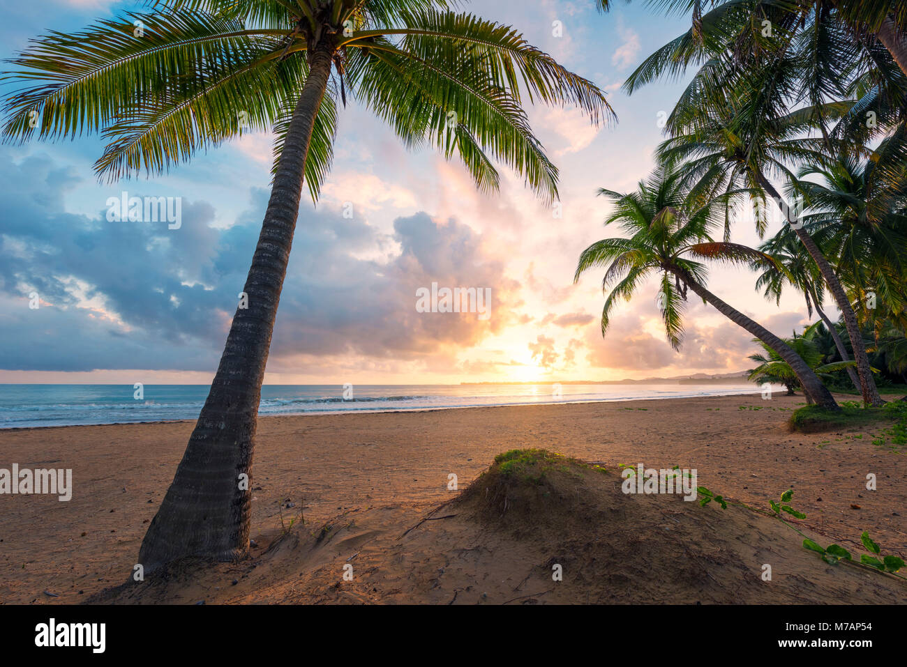 Picturesque sunrise on a Caribbean beach of the island of Puerto Rico, - Stock Image