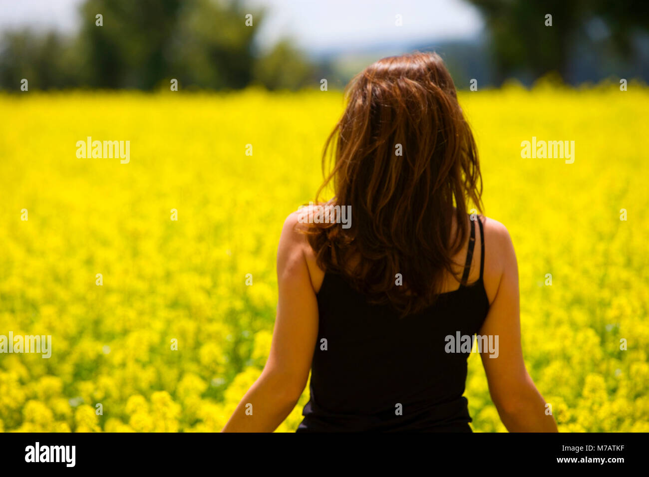 Rear view of a young woman standing in a field, Czech Republic - Stock Image