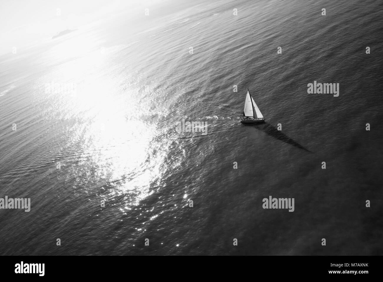 Sailboat in the sea, San Francisco, California, USA - Stock Image