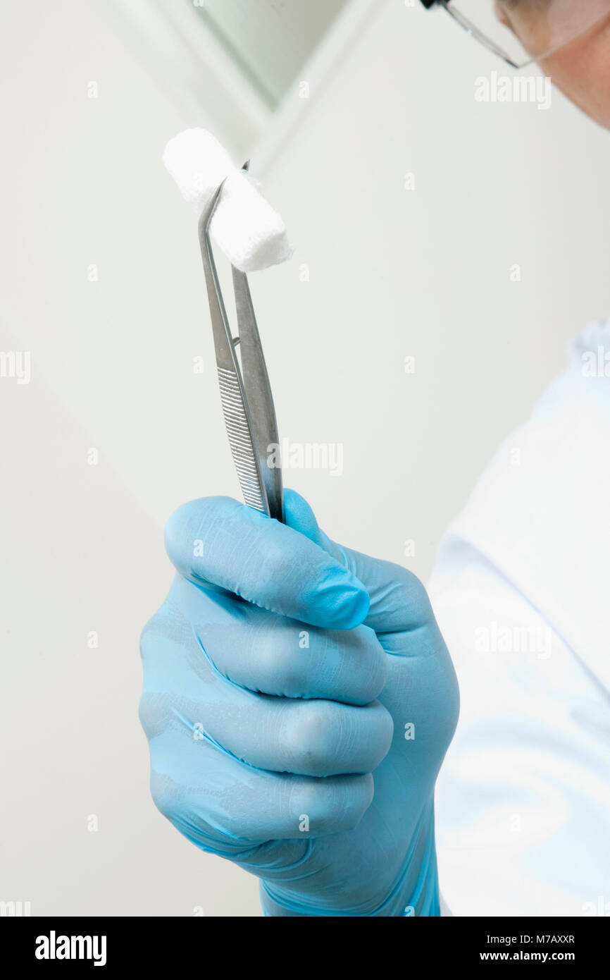 Close-up of a dentist holding cotton in forceps - Stock Image